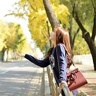 可爱丝带时尚女款包包